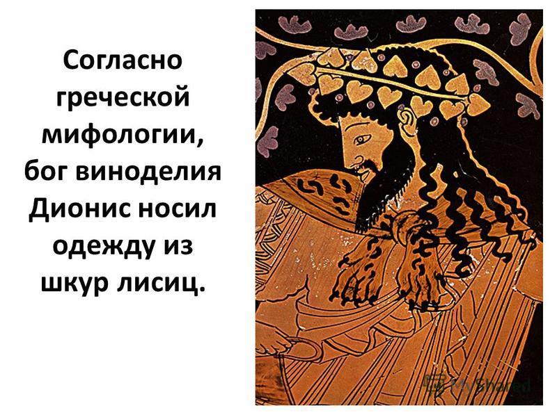 Согласно греческой мифологии, бог виноделия Дионис носил одежду из шкур лисиц.