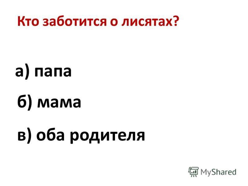 Кто заботится о лисятах? в) оба родителя а) папа б) мама