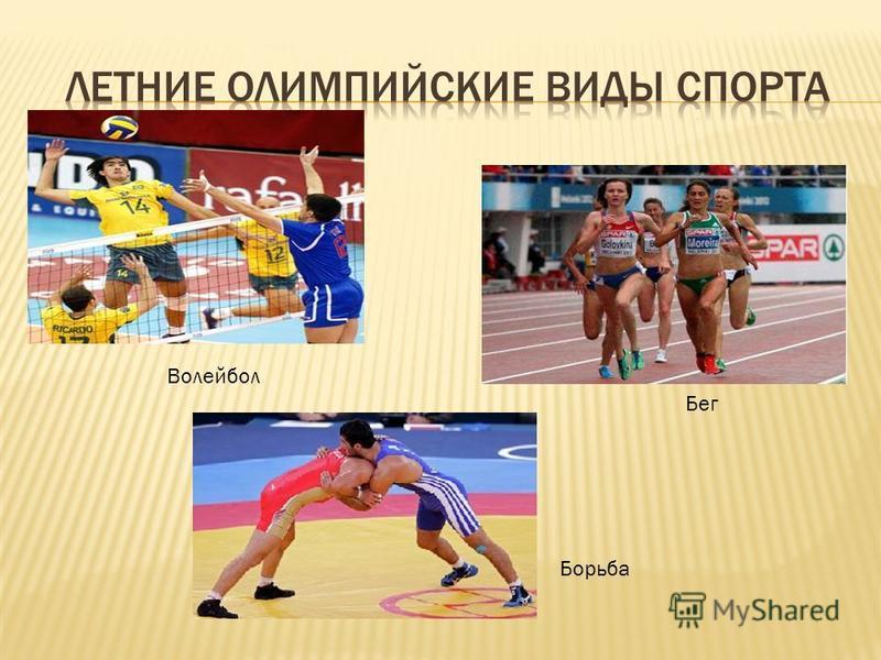 Волейбол Бег Борьба
