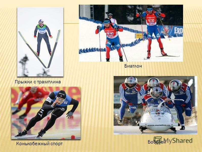 Прыжки с трамплина Биатлон Бобслей Конькобежный спорт