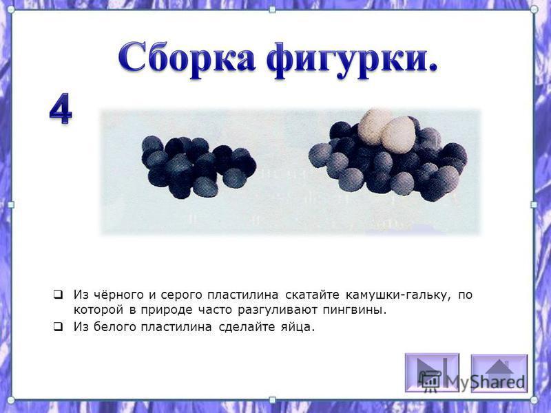 Из чёрного и серого пластилина скатайте камушки-гальку, по которой в природе часто разгуливают пингвины. Из белого пластилина сделайте яйца.