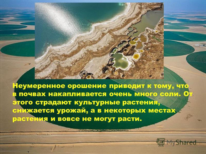 Неумеренное орошение приводит к тому, что в почвах накапливается очень много соли. От этого страдают культурные растения, снижается урожай, а в некоторых местах растения и вовсе не могут расти.