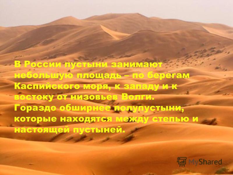 В России пустыни занимают небольшую площадь – по берегам Каспийского моря, к западу и к востоку от низовьев Волги. Гораздо обширнее полупустыни, которые находятся между степью и настоящей пустыней.