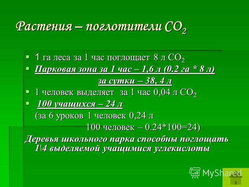 Растения – поглотители СО 2 1 га леса за 1 час поглощает 8 л СО 2 1 га леса за 1 час поглощает 8 л СО 2 Парковая зона за 1 час – 1,6 л (0.2 га * 8 л) Парковая зона за 1 час – 1,6 л (0.2 га * 8 л) за сутки – 38, 4 л за сутки – 38, 4 л 1 человек выделя