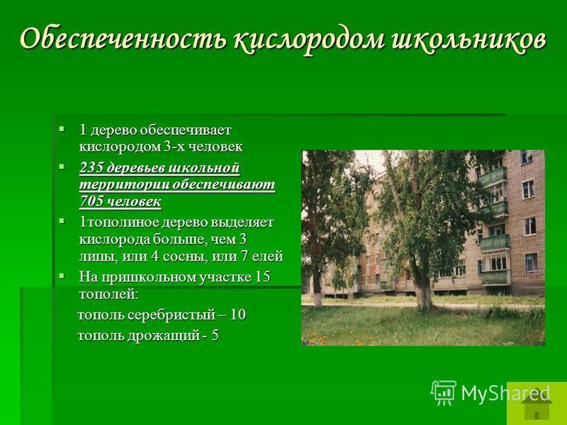 Обеспеченность кислородом школьников 1 дерево обеспечивает кислородом 3-х человек 1 дерево обеспечивает кислородом 3-х человек 235 деревьев школьной территории обеспечивают 705 человек 235 деревьев школьной территории обеспечивают 705 человек 1 топол