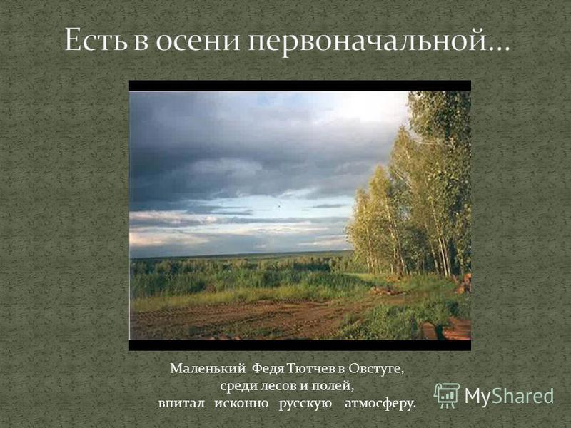 Маленький Федя Тютчев в Овстуге, среди лесов и полей, впитал исконно русскую атмосферу.