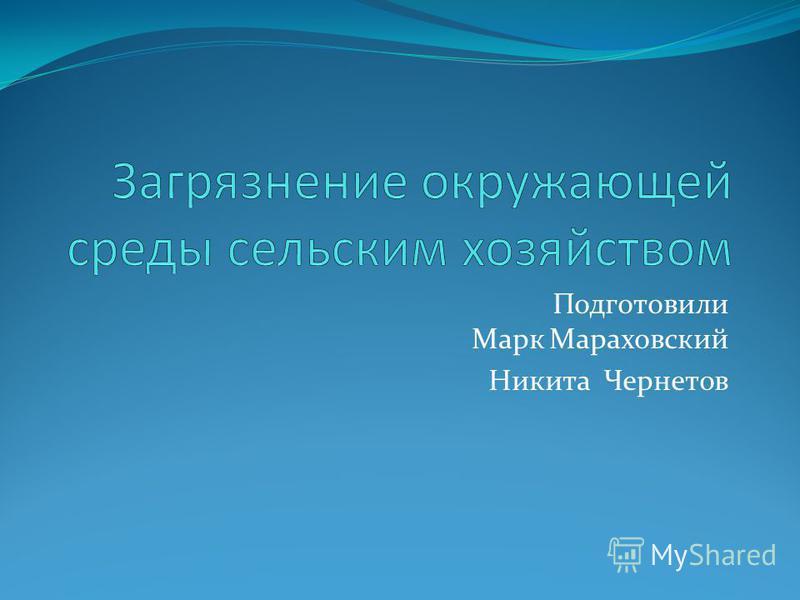 Подготовили Марк Мараховский Никита Чернетов