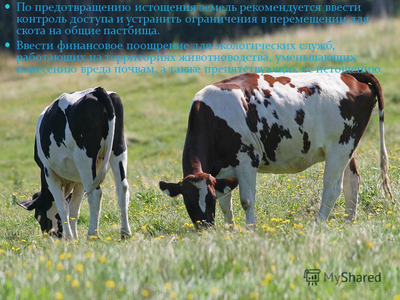По предотвращению истощения земель рекомендуется ввести контроль доступа и устранить ограничения в перемещении для скота на общие пастбища. Ввести финансовое поощрение для экологических служб, работающих на территориях животноводства, уменьшающих нан