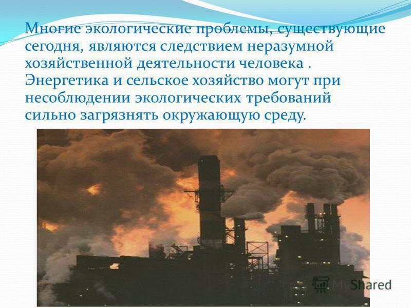 Многие экологические проблемы, существующие сегодня, являются следствием неразумной хозяйственной деятельности человека. Энергетика и сельское хозяйство могут при несоблюдении экологических требований сильно загрязнять окружающую среду.