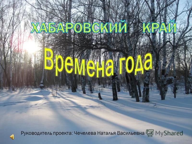 Руководитель проекта: Чечелева Наталья Васильевна