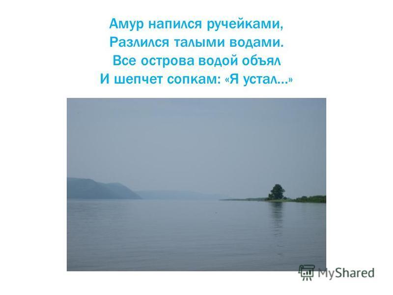 Амур напился ручейками, Разлился талыми водами. Все острова водой объял И шепчет сопкам: «Я устал…»