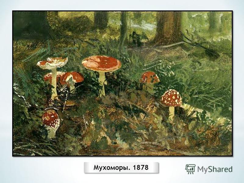 Мухоморы. 1878