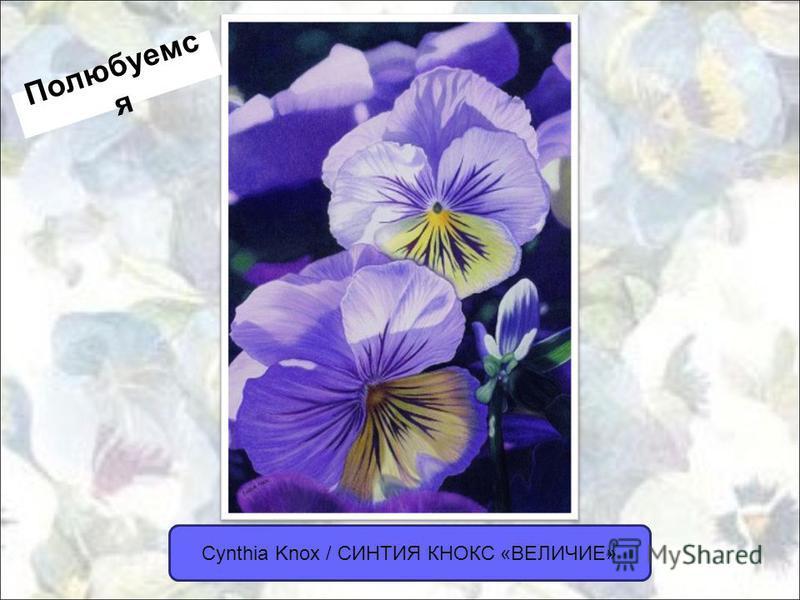 Cynthia Knox / СИНТИЯ КНОКС «ВЕЛИЧИЕ» Полюбуемс я