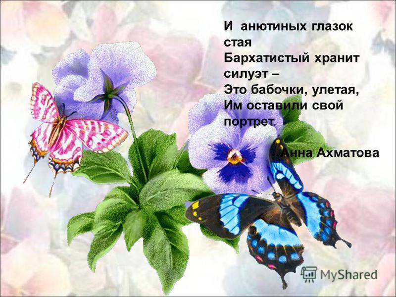 И анютиных глазок стая Бархатистый хранит силуэт – Это бабочки, улетая, Им оставили свой портрет. Анна Ахматова