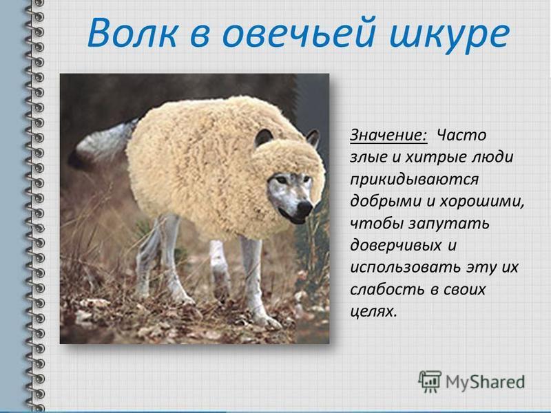 Волк в овечьей шкуре Значение: Часто злые и хитрые люди прикидываются добрыми и хорошими, чтобы запутать доверчивых и использовать эту их слабость в своих целях.