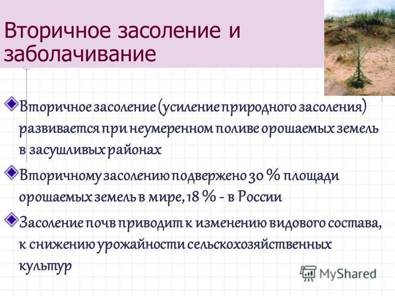 Вторичное засоление и заболачивание Вторичное засоление (усиление природного засоления) развивается при неумеренном поливе орошаемых земель в засушливых районах Вторичному засолению подвержено 30 % площади орошаемых земель в мире, 18 % - в России Зас
