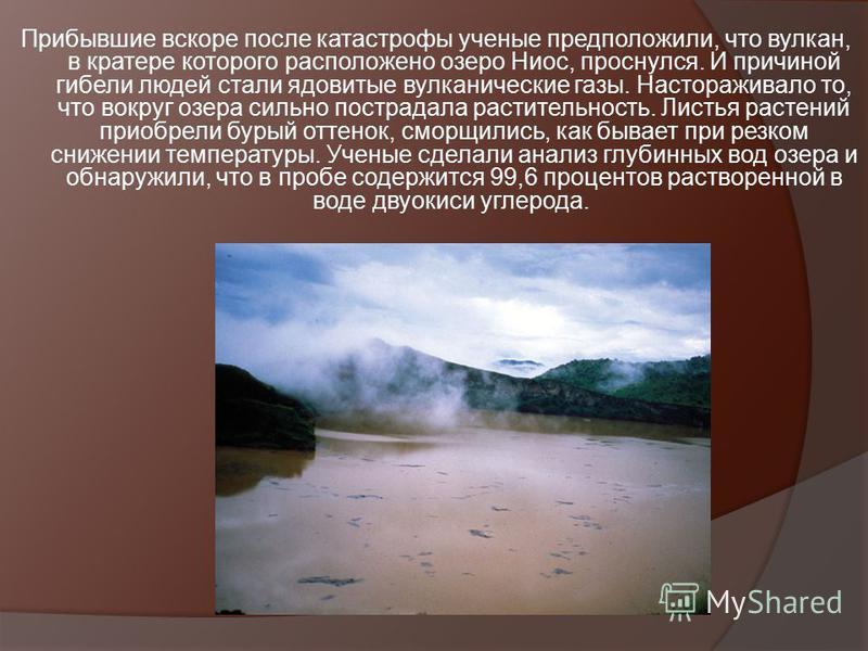 Прибывшие вскоре после катастрофы ученые предположили, что вулкан, в кратере которого расположено озеро Ниос, проснулся. И причиной гибели людей стали ядовитые вулканические газы. Настораживало то, что вокруг озера сильно пострадала растительность. Л