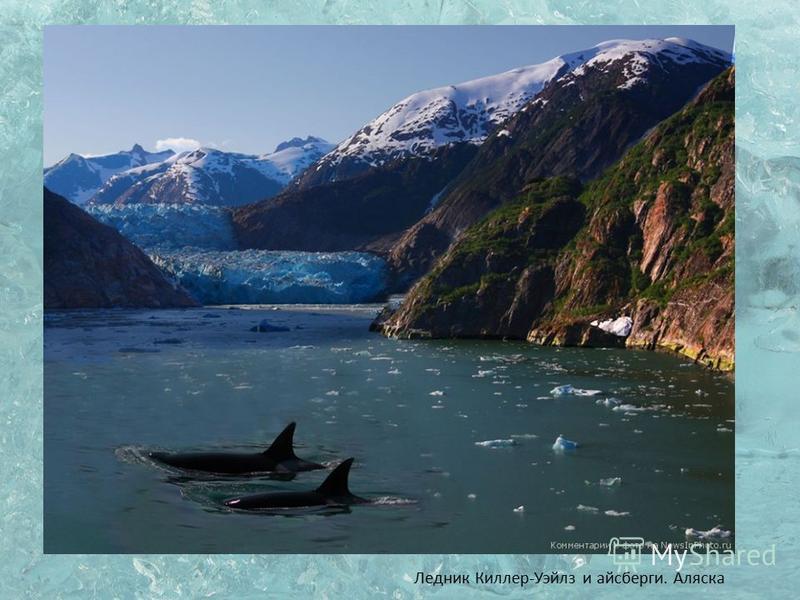 Ледник Киллер-Уэйлз и айсберги. Аляска