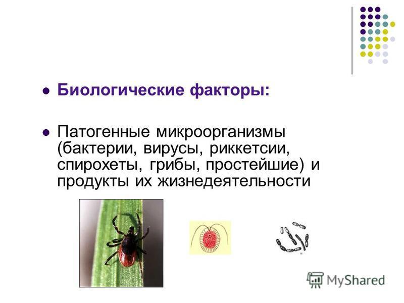 Биологические факторы: Патогенные микроорганизмы (бактерии, вирусы, риккетсии, спирохеты, грибы, простейшие) и продукты их жизнедеятельности