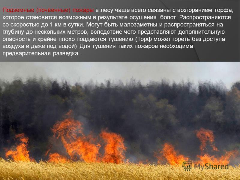 Подземные (почвенные) пожары в лесу чаще всего связаны с возгоранием торфа, которое становится возможным в результате осушения болот. Распространяются со скоростью до 1 км в сутки. Могут быть малозаметны и распространяться на глубину до нескольких ме