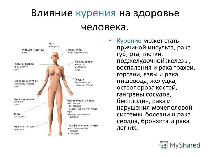 Влияние курения на здоровье человека. Курение может стать причиной инсульта, рака губ, рта, глотки, поджелудочной железы, воспаления и рака трахеи, гортани, язвы и рака пищевода, желудка, остеопороза костей, гангрены сосудов, бесплодия, рака и наруше