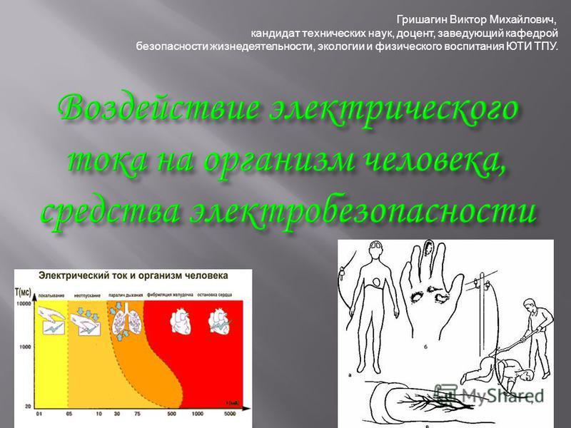 Гришагин Виктор Михайлович, кандидат технических наук, доцент, заведующий кафедрой безопасности жизнедеятельности, экологии и физического воспитания ЮТИ ТПУ.