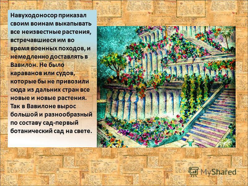 Навуходоносор приказал своим воинам выкапывать все неизвестные растения, встречавшиеся им во время военных походов, и немедленно доставлять в Вавилон. Не было караванов или судов, которые бы не привозили сюда из дальних стран все новые и новые растен