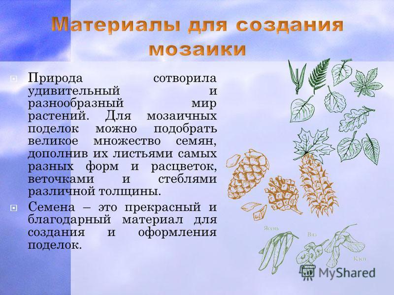 Природа сотворила удивительный и разнообразный мир растений. Для мозаичных поделок можно подобрать великое множество семян, дополнив их листьями самых разных форм и расцветок, веточками и стеблями различной толщины. Семена – это прекрасный и благодар