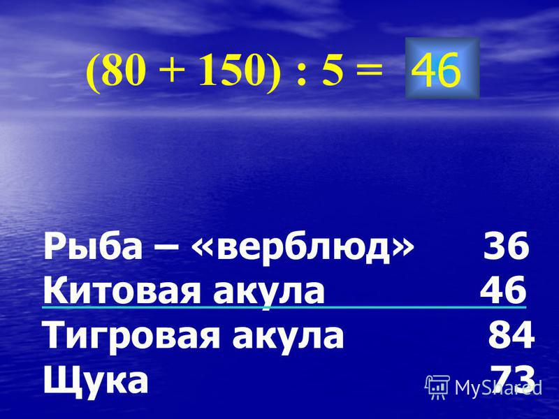 46 (80 + 150) : 5 = Рыба – «верблюд» 36 Китовая акула 46 Тигровая акула 84 Щука 73