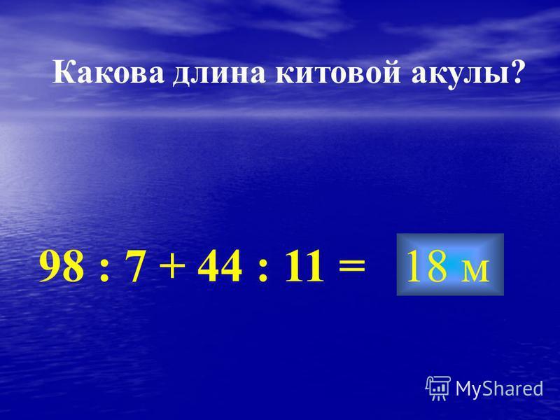 18 м 98 : 7 + 44 : 11 = Какова длина китовой акулы?