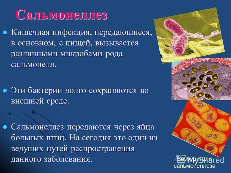 Сальмонеллез Кишечная инфекция, передающиеся, в основном, с пищей, вызывается различными микробами рода сальмонелл. Кишечная инфекция, передающиеся, в основном, с пищей, вызывается различными микробами рода сальмонелл. Эти бактерии долго сохраняются