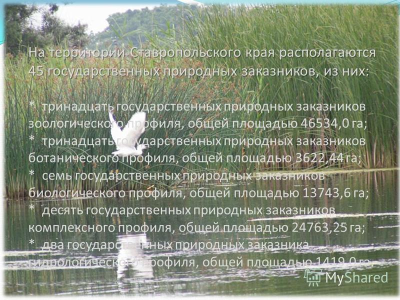 На территории Ставропольского края располагаются 45 государственных природных заказников, из них: На территории Ставропольского края располагаются 45 государственных природных заказников, из них: * тринадцать государственных природных заказников зоол