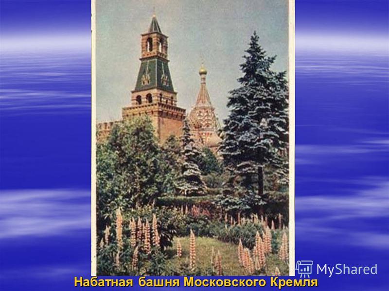 Набатная башня Московского Кремля