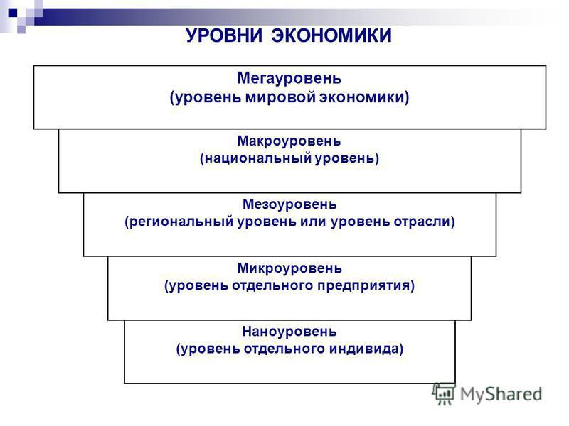 Наноуровень (уровень отдельного индивида) Микроуровень (уровень отдельного предприятия) Мезоуровень (региональный уровень или уровень отрасли) Макроуровень (национальный уровень) Мегауровень (уровень мировой экономики) УРОВНИ ЭКОНОМИКИ