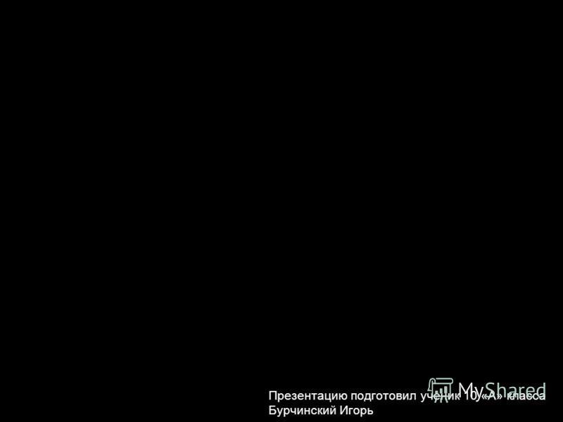 Презентацию подготовил ученик 10 «А» класса Бурчинский Игорь
