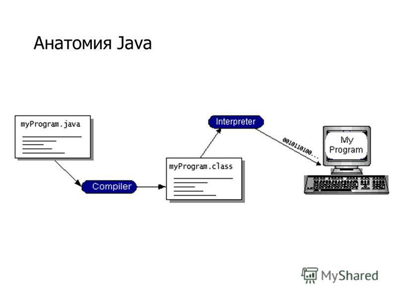 Анатомия Java