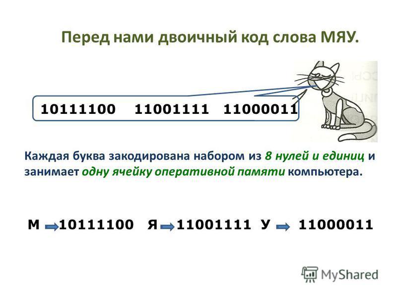 Перед нами двоичный код слова МЯУ. Каждая буква закодирована набором из 8 нулей и единиц и занимает одну ячейку оперативной памяти компьютера. М 10111100 Я 11001111 У 11000011 10111100 11001111 11000011