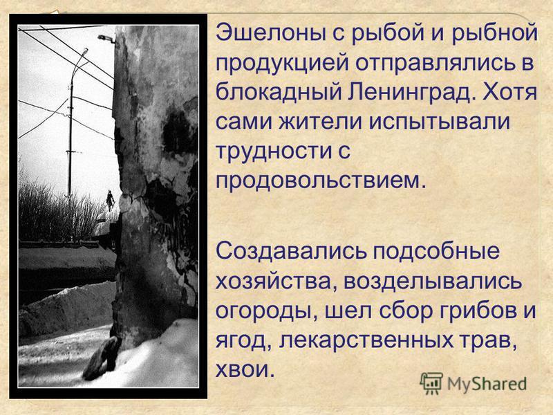Эшелоны с рыбой и рыбной продукцией отправлялись в блокадный Ленинград. Хотя сами жители испытывали трудности с продовольствием. Создавались подсобные хозяйства, возделывались огороды, шел сбор грибов и ягод, лекарственных трав, хвои.