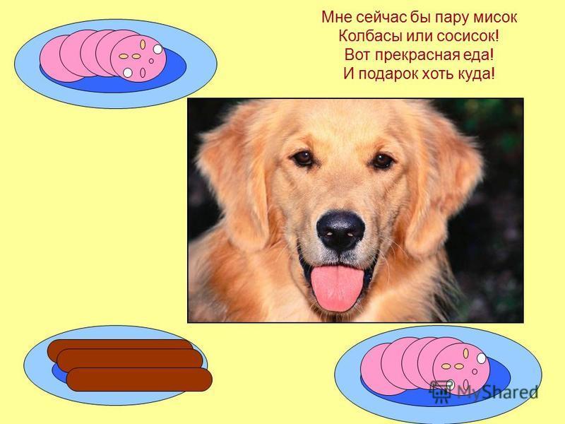 Мы щенку на день рожденья Приготовили печенье… Только он не рад совсем - Я ведь этого не ем!