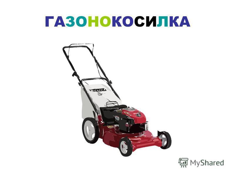 СЕКАТОР