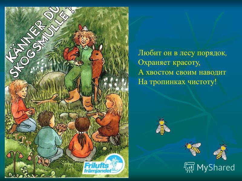 Любит он в лесу порядок, Охраняет красоту, А хвостом своим наводит На тропинках чистоту!