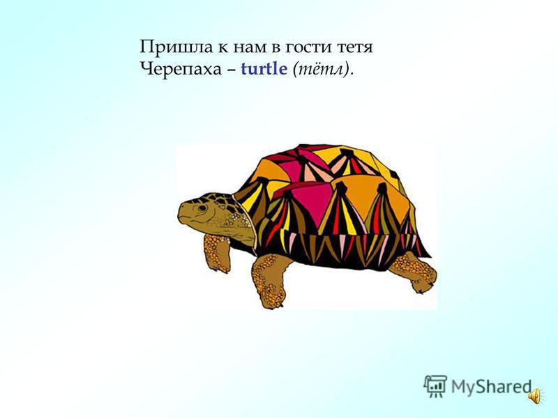 Поскорей запомни и не забывай! По-английски – PARROT (пэрет), по-русски попугай.