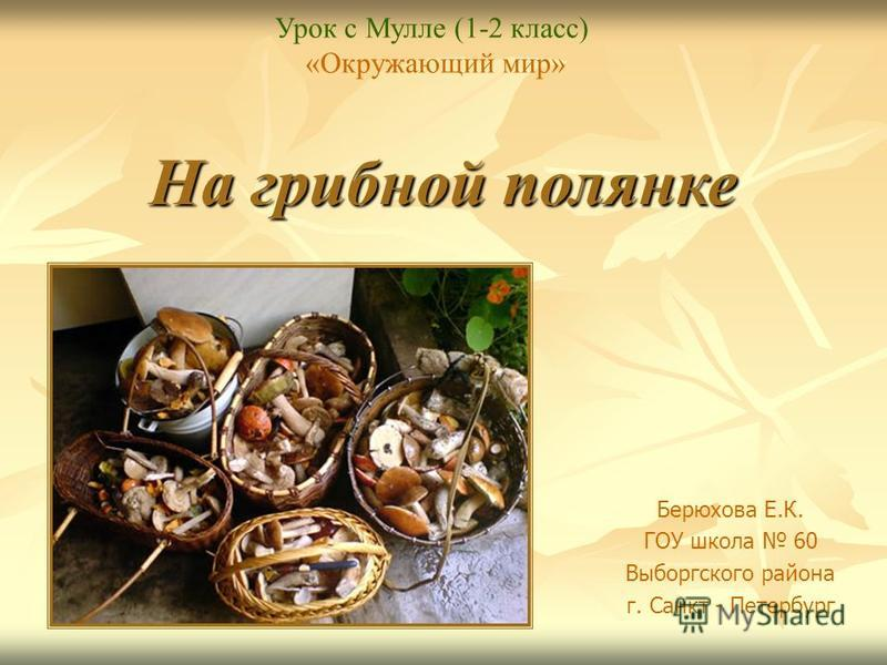 На грибной полянке Берюхова Е.К. ГОУ школа 60 Выборгского района г. Санкт - Петербург Урок с Мулле (1-2 класс) «Окружающий мир»