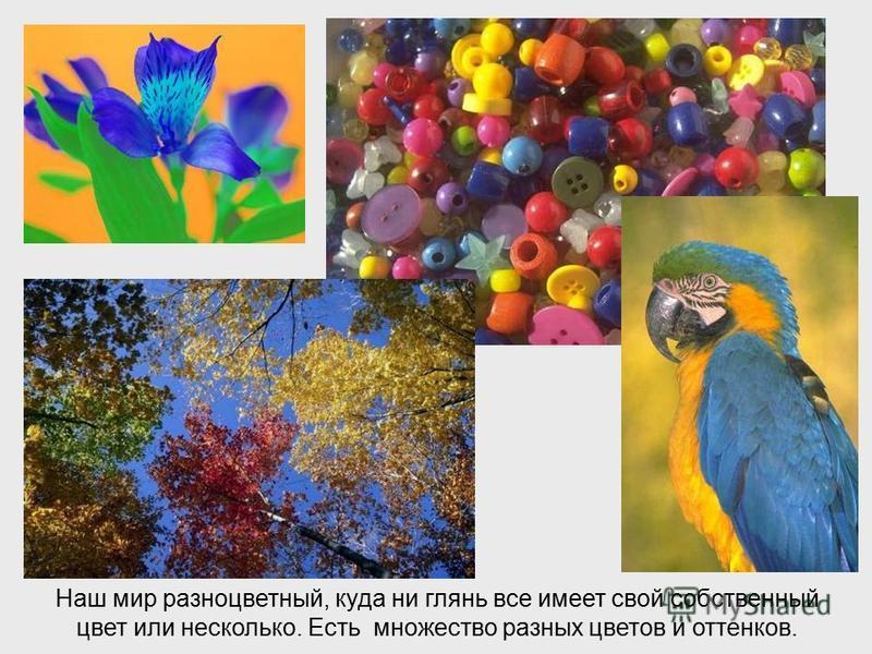 ЦВЕТА И ОТЕНКИ ЦВЕТА И ОТЕНКИ (Играем с цветами) Виктория Кузнецова