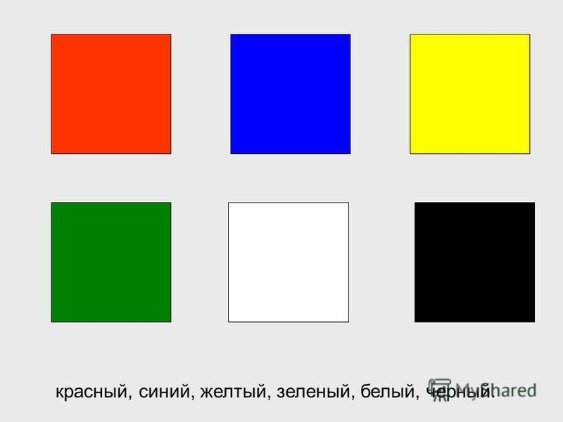 Как здорово, что наш мир разноцветный! Основные цвета, которые часто встречаются в природе