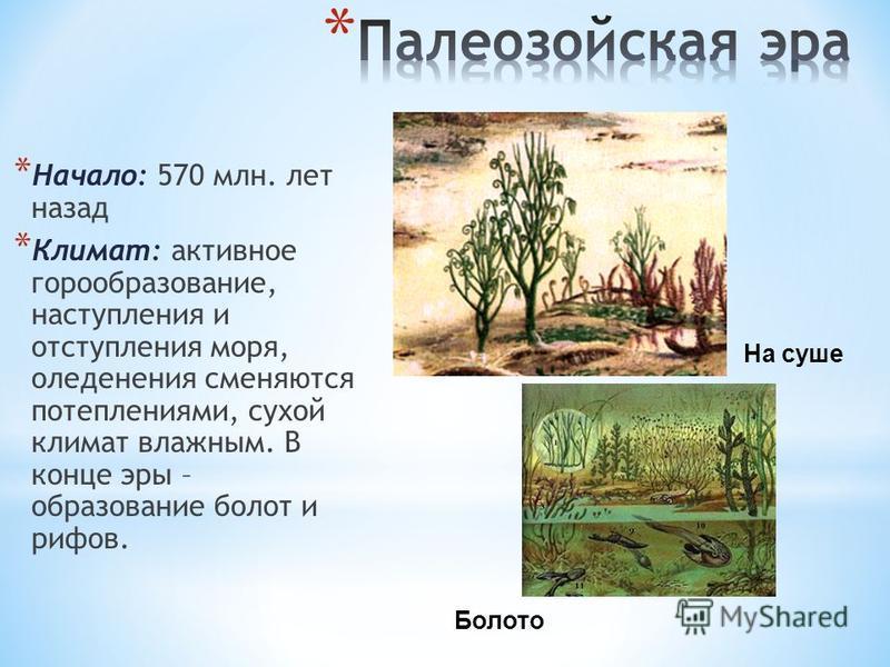 * Начало: 570 млн. лет назад * Климат: активное горообразование, наступления и отступления моря, оледенения сменяются потеплениями, сухой климат влажным. В конце эры – образование болот и рифов. На суше Болото