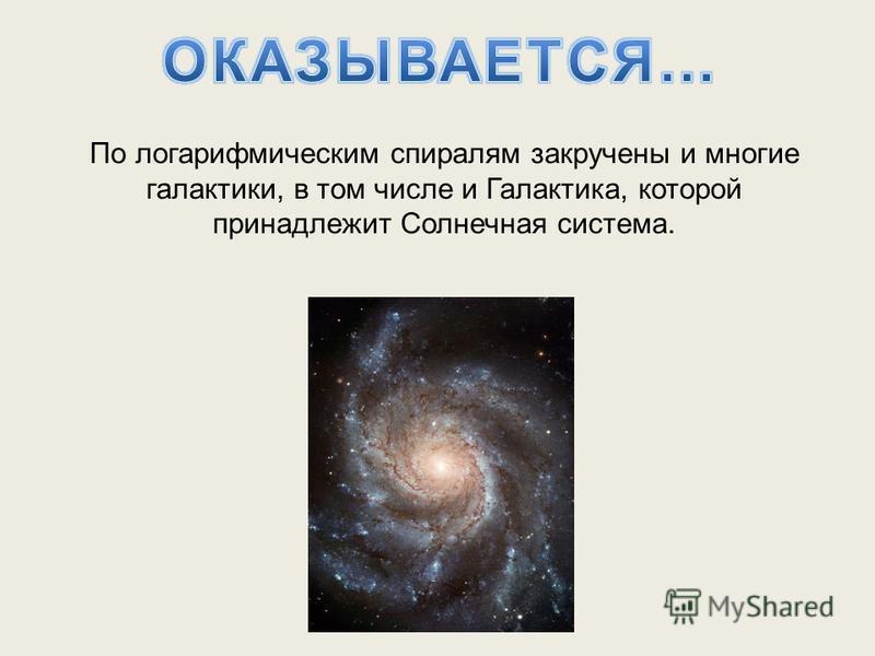 По логарифмическим спиралям закручены и многие галактики, в том числе и Галактика, которой принадлежит Солнечная система.