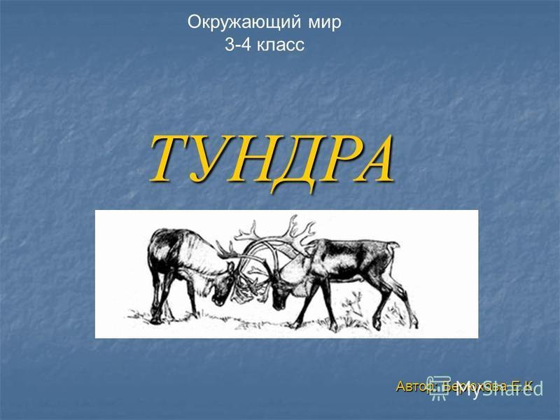 ТУНДРА Окружающий мир 3-4 класс Автор: Берюхова Е.К.