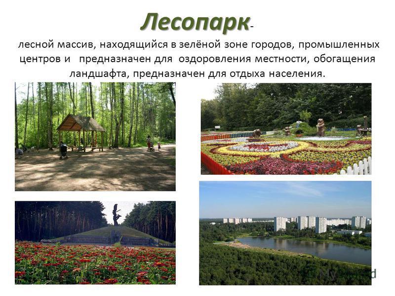 Лесопарк Лесопарк - лесной массив, находящийся в зелёной зоне городов, промышленных центров и предназначен для оздоровления местности, обогащения ландшафта, предназначен для отдыха населения.