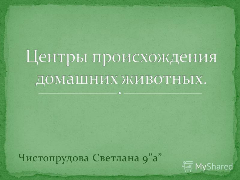 Чистопрудова Светлана 9 а